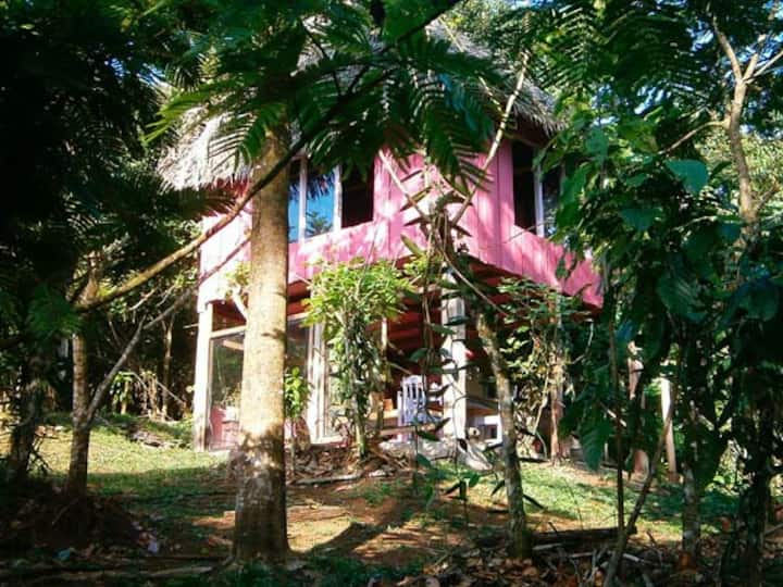 Vanilla Jungle Lodge - Your Home In The Rainforest