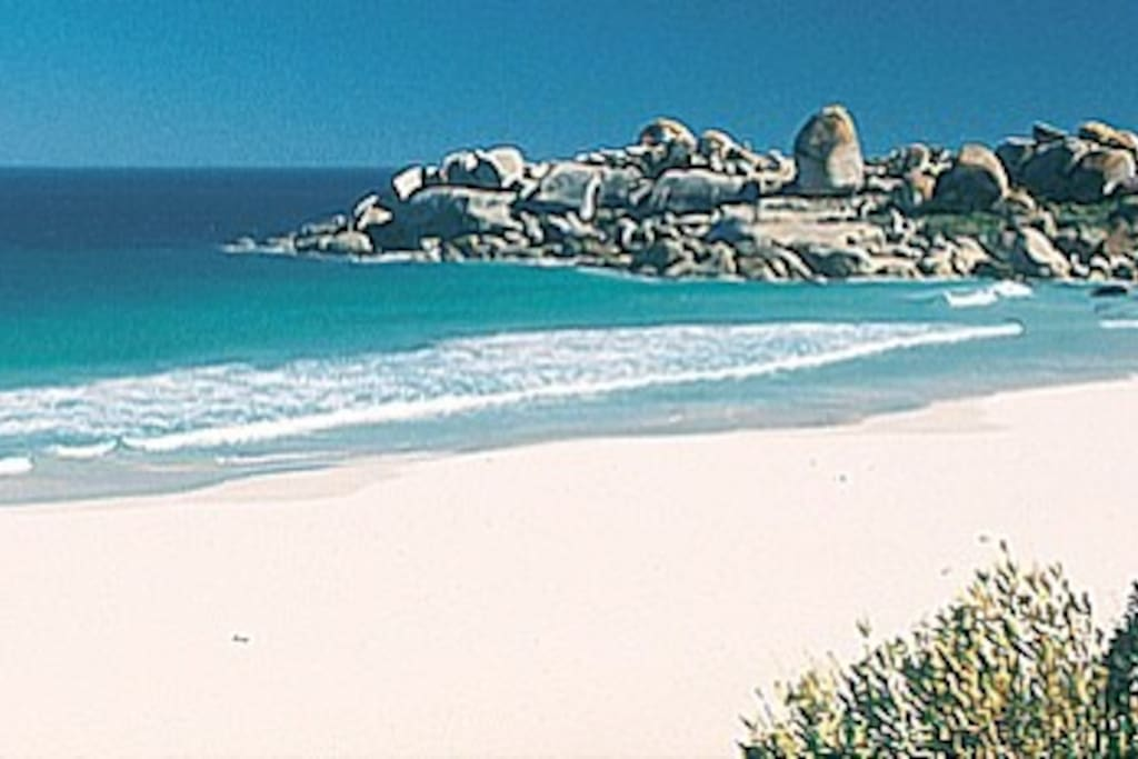 Pristine Camps bay Beach across from the apartment