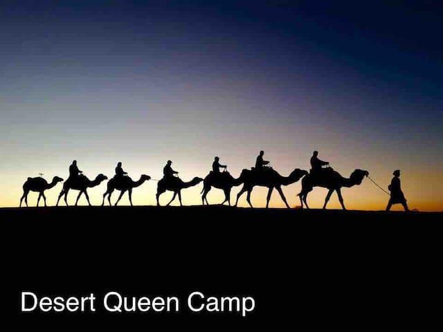 Camel trekking in Desert. 2020 offer 17€ person.