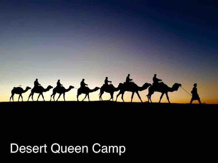 Camel trekking in Desert. 2020 offer 17€ person.