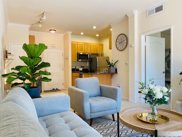Luxury Renaissance Style Apartment +FREE PARKING