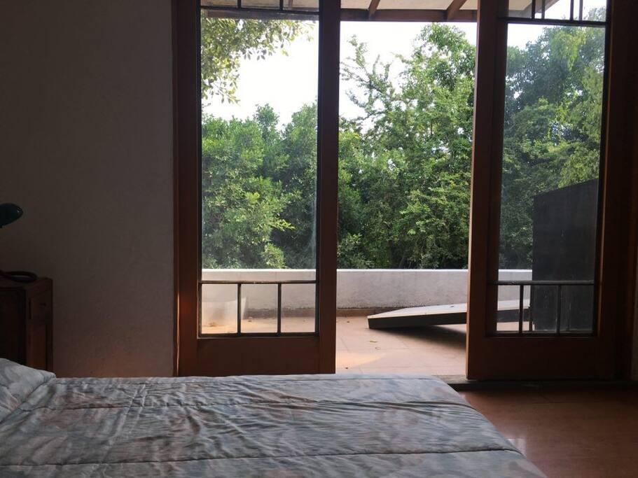 Vista de la terraza desde el interior.