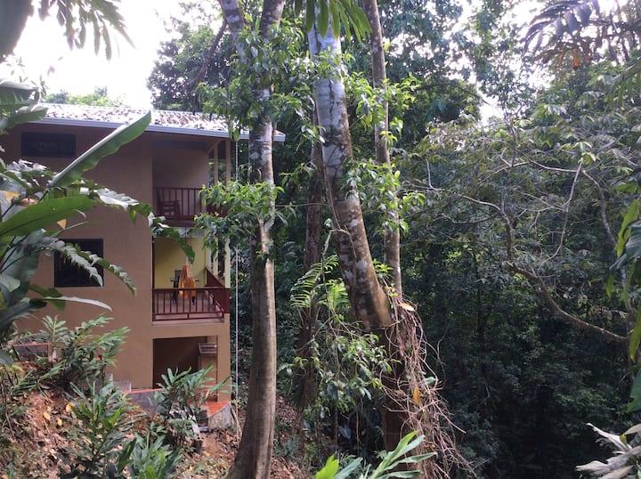 Drake Bay Town Mango St CASONA w A/C,  Corcovado