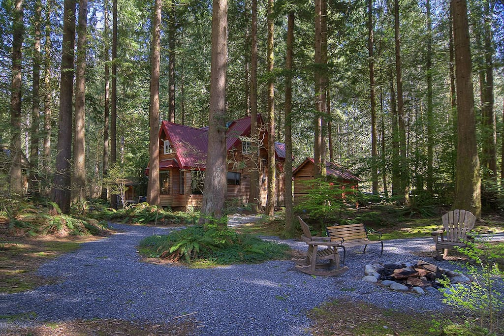 The sprawling property amidst towering trees!