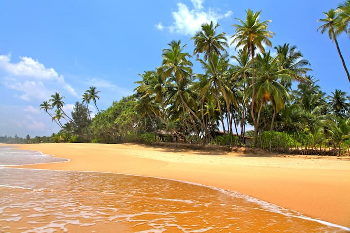 Muhudu Niwasa SriLanka Beach House - Tangalle - Villa