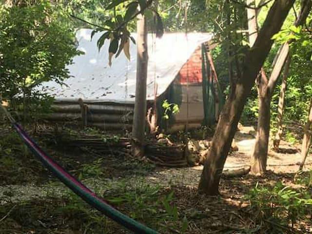 La casa de Lorenzo - isla bejuco