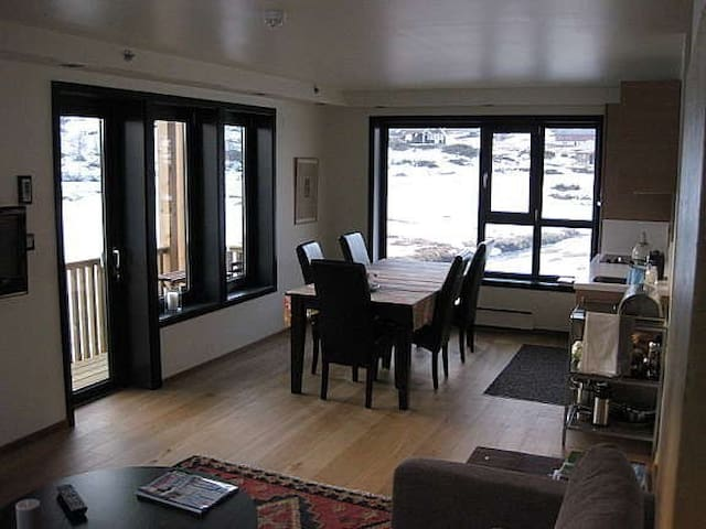 Beautiful aparment w terrific view - Ustaoset - Apartamento