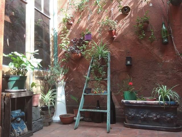 Cozy Loft in the heart of San Telmo