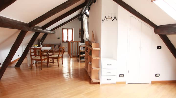 Bright attic with panoramic terrace, Casa G