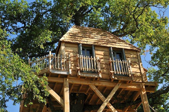 La Canopée, la luxueuse Cabane perchée du Château - Onet-le-Château - 樹屋