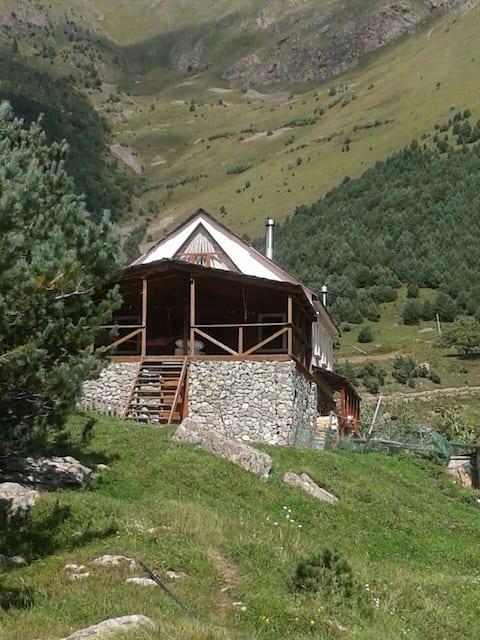 Высокогорный сельский дом