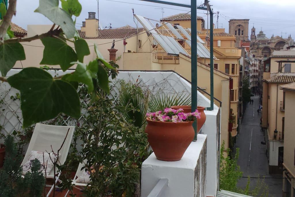 Terraza & Catedral