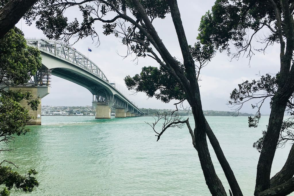 A short stroll to the ferry wharf under the Auckland Harbour Bridge
