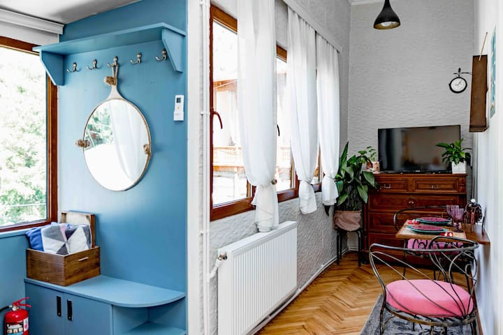 2 Bedroom Apt in Sololaki, 18 Amagleba str.