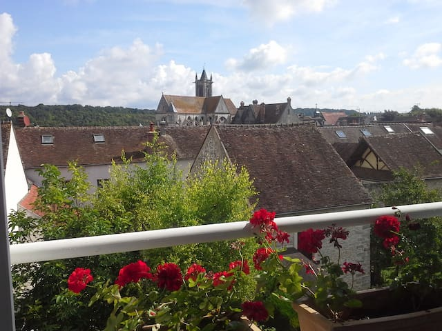 Entire cozy house +private garden - Moret-sur-Loing - Hus