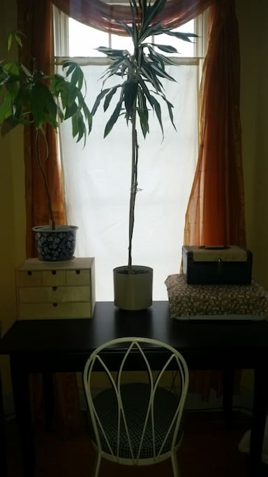 Work space. Grab a pen, use the printer. Water the plant if he is thirty.
