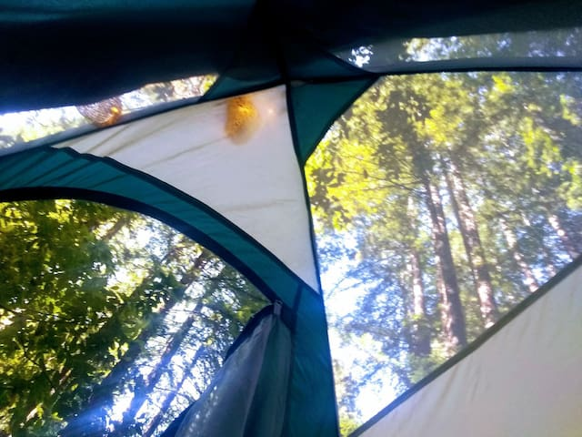 Cozy Tent in Tranquility, ready to go!