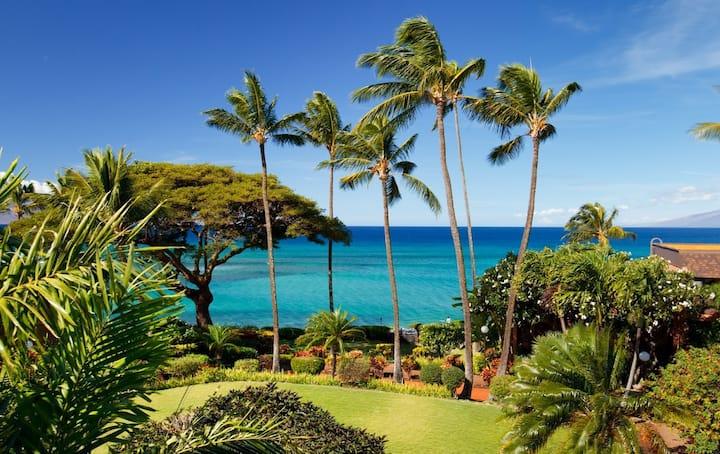 Romantic Oceanfront Resort - Turtle Beach