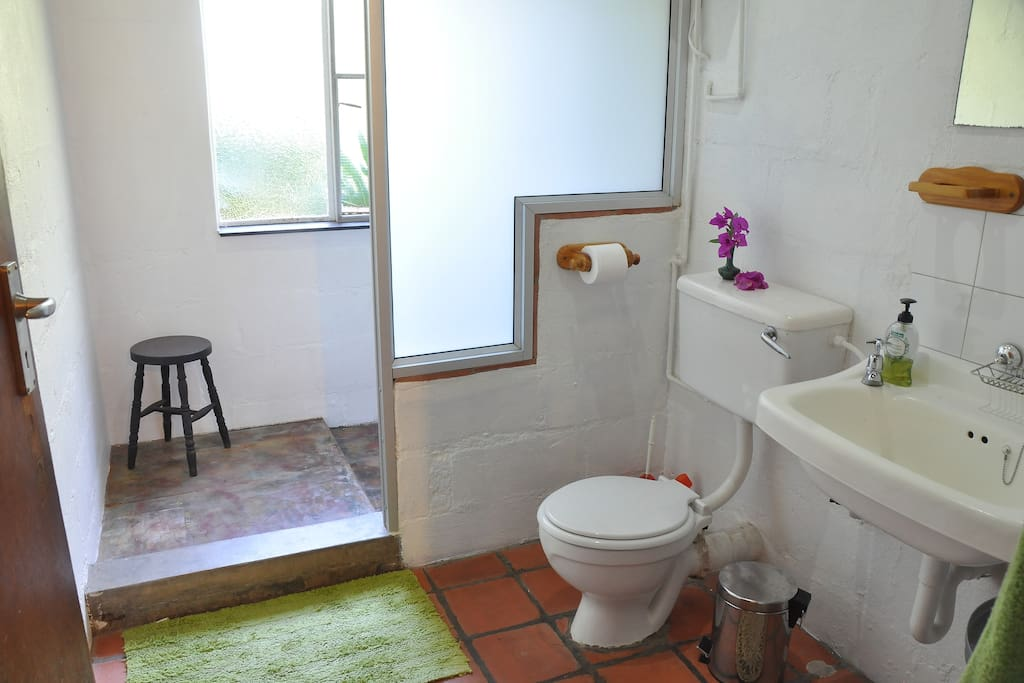 bathroom with large shower cubicle