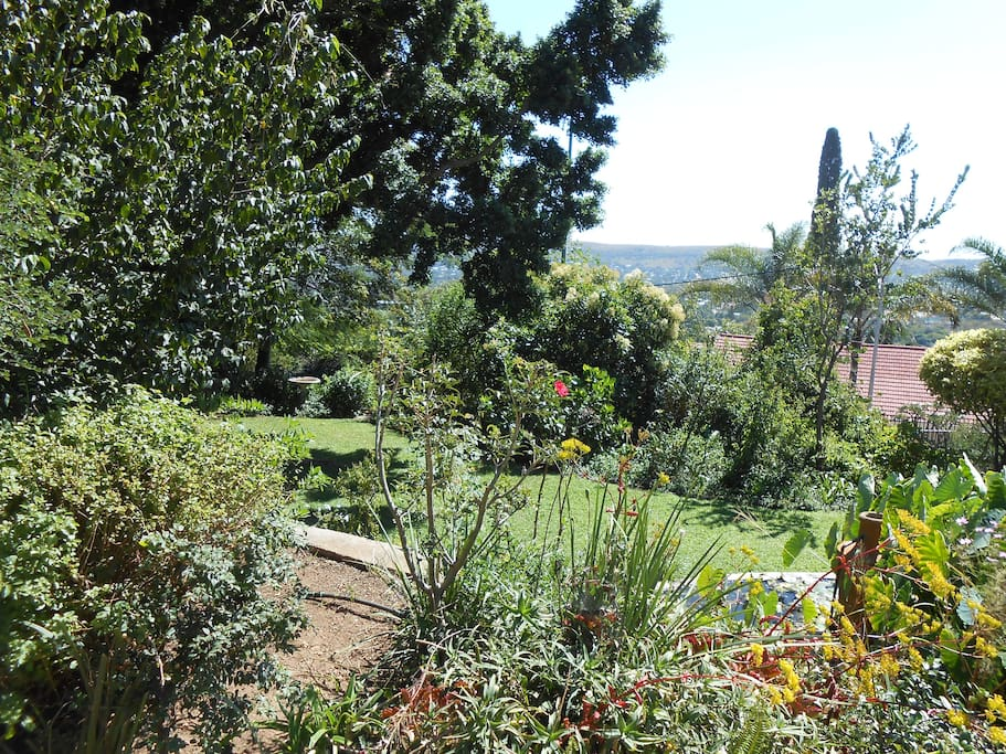 The garden is planned to go with the rocky hill on which it exists