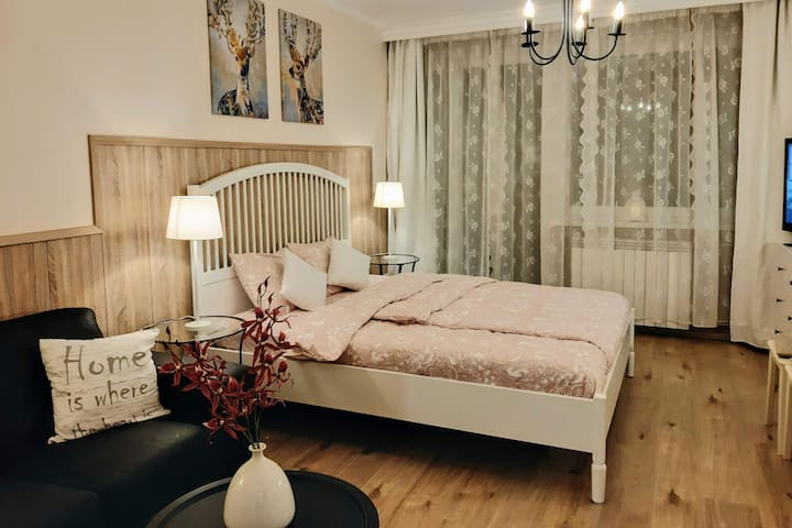 Deluxe apartment in the heart of the city
