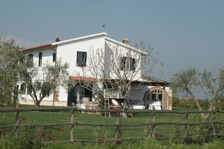 Amazing Maremma with swimming-pool - Pescia Romana