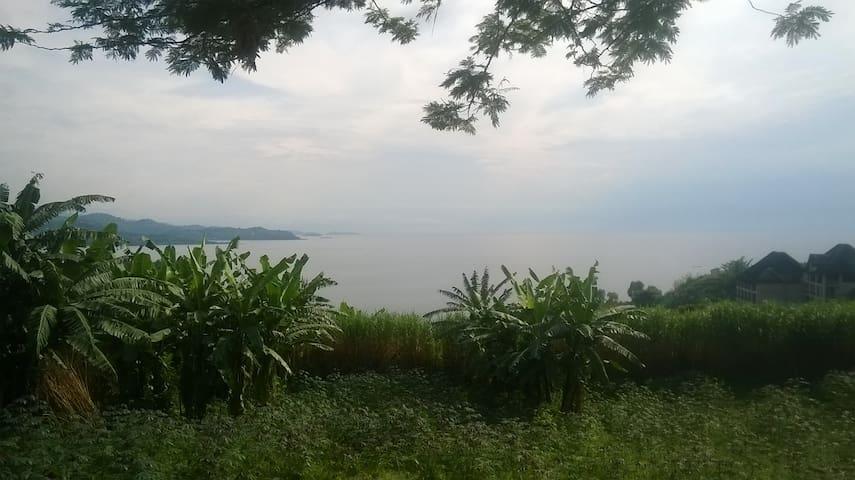 Un nid  de rêve!  THE NEST OF DREAM! - Gisenyi - Natur lodge