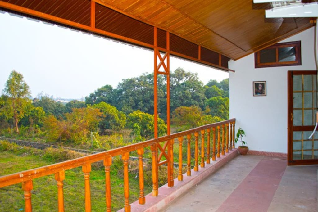 View of the forests from the verandas