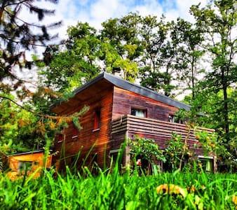 Chambre Noisette - Arbonne-la-Forêt - Bed & Breakfast