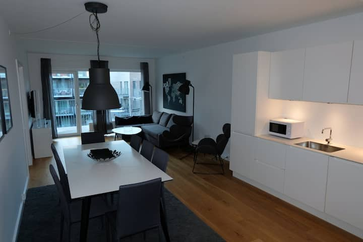 Modern 3 bedroom apartment with balcony at the Copenhagen harbor