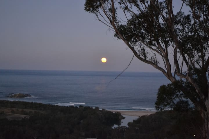 Actual view private space minutes to beach n lake - Woolgoolga - Bed & Breakfast