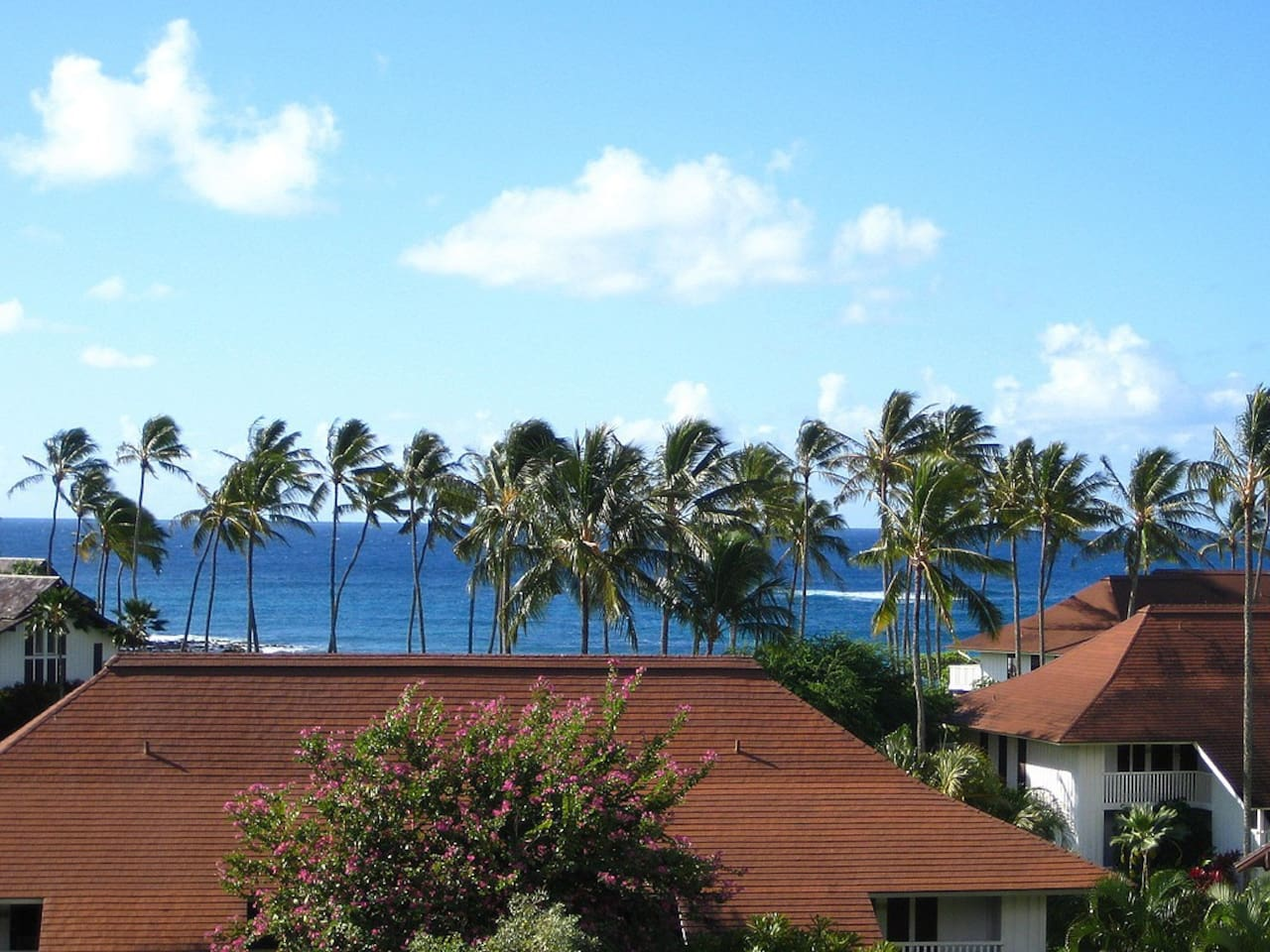The view of the ocean from the lanai