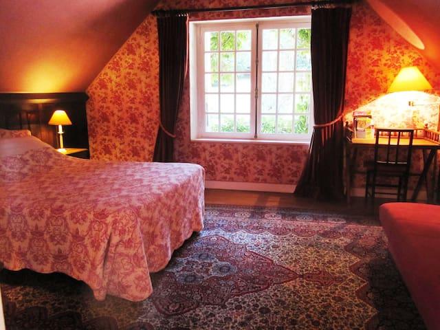 Добро пожаловать !  Rose room - Châteauneuf-la-Forêt - Bed & Breakfast