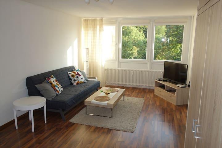 Günstige 1 Zi. Wohnung - Heidelberg - Lakás