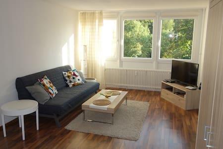 Günstige 1 Zi. Wohnung - 海德尔堡 - 公寓