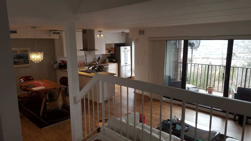 Bright 1 BDR Apt close to old town Alexandria - Alexandria - Wohnung