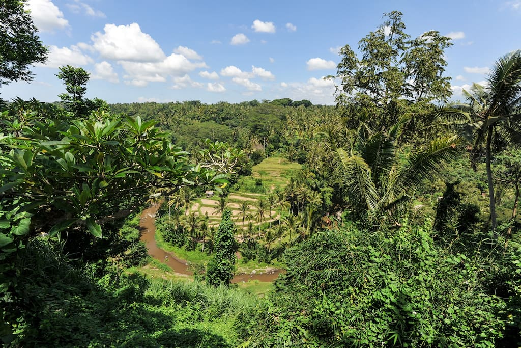 """Our view, it is considered #one of Bali´s 7 wonders"""""""