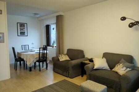 Uusikyla apartment