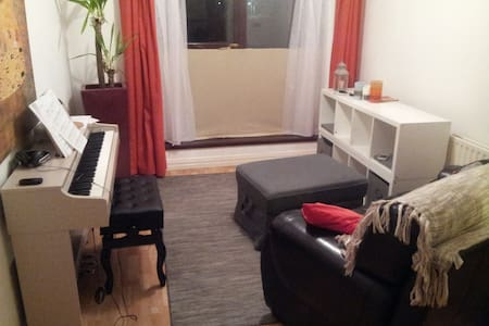 Lovely Private 1 Bed Flat Dublin City Centre - Ranelagh - Lakás
