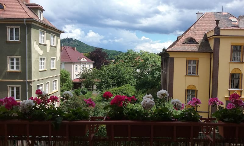 Room with a view and a balcony in the spa area - Teplice - Apartment