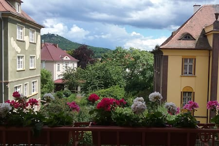 Room with a view and a balcony in the spa area - Teplice