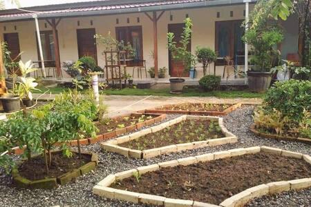 Guesthouse Rumah KayuKu Syariah (2)