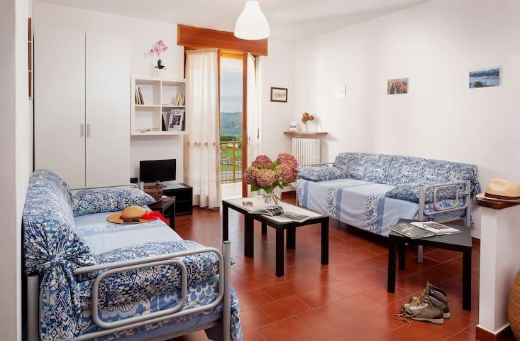 2 bedrooms Apartment in Langhe - Treiso - Pis