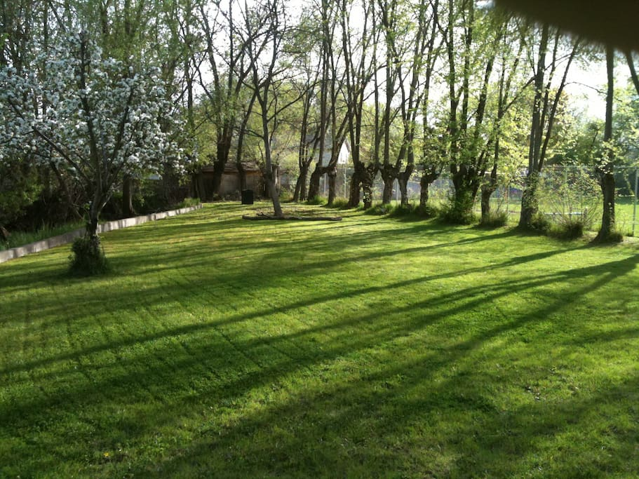 1/4 acre back yard, across from cottage, great for soccer!