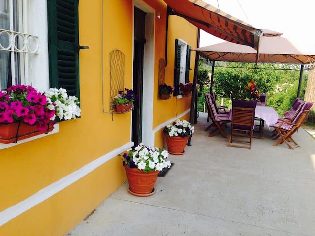 Casa vacanze in Piemonte, prov.Asti - Castelnuovo Belbo - House