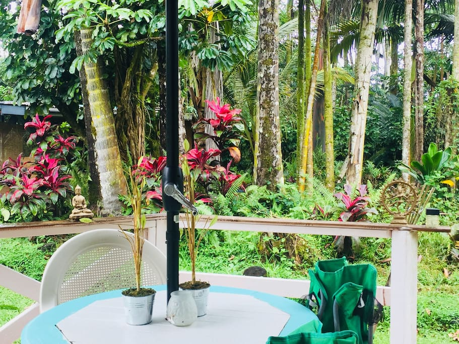 The lush jungle views @ Majestic Palms.