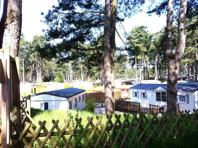 Mobil home chalet in camp site Le Bois Dormant