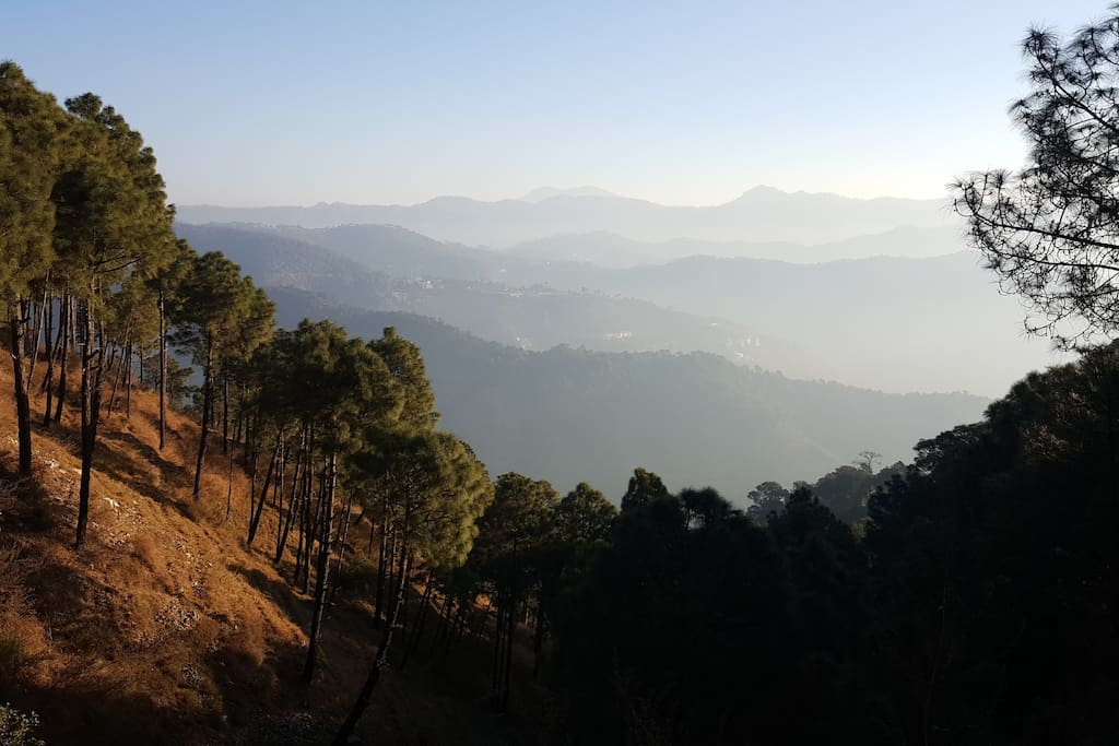 A view of the valley during morning walk along the road.