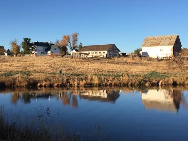 Historic Bowles Farm Basement Apartment