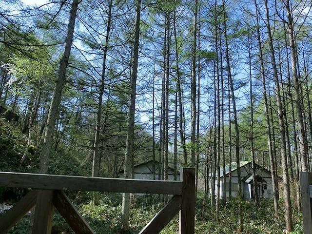 別荘地で1戸建て - Nagano-shi - Casa